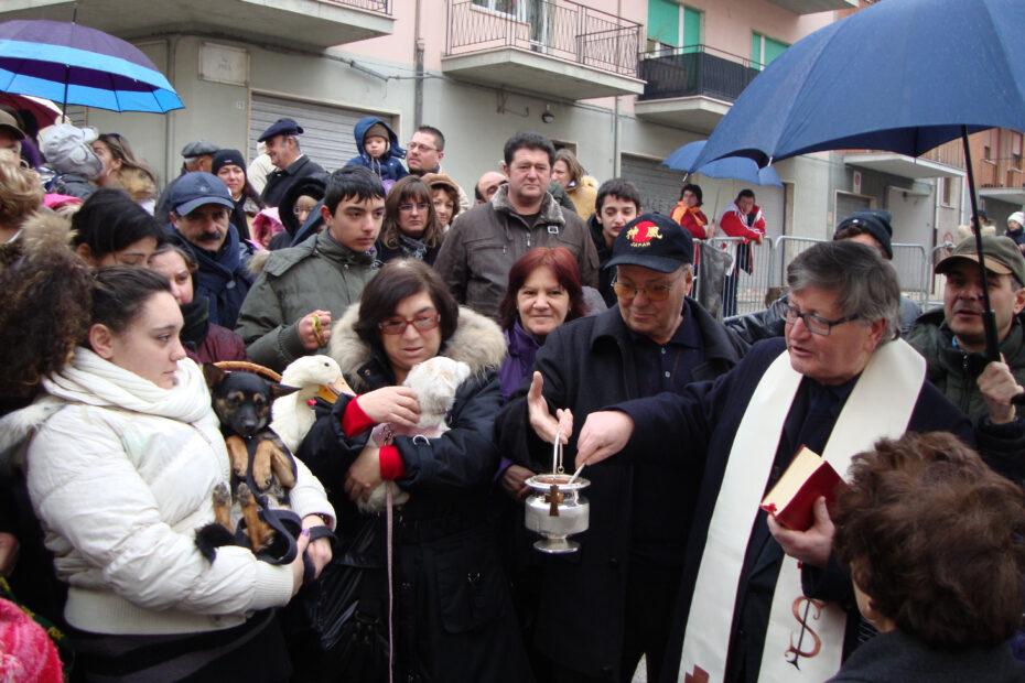 Festa di SantAntonio Abate a Campobasso Benedizione degli animali 1