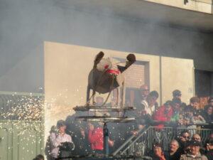 Festa di Sant'Antonio Abate a Macerata Campania - Fuochi pirotecnici - Il maiale