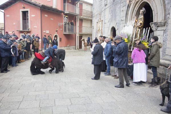 Festa di Sant'Antonio Abate a Novara di Sicilia - Benedizione degli animali
